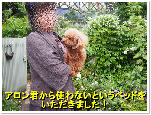 20140704_044.jpg