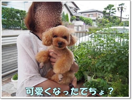 20140707_001.jpg