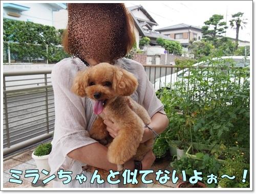 20140707_014.jpg