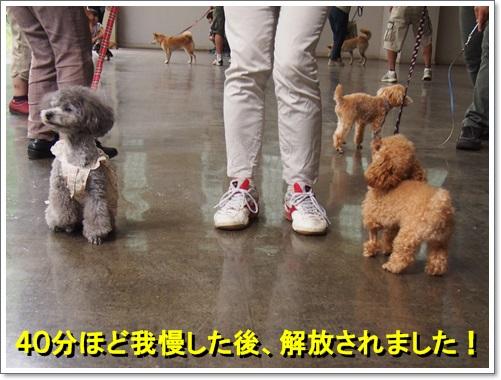 20140713_010.jpg
