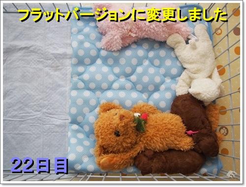 20140719_134.jpg