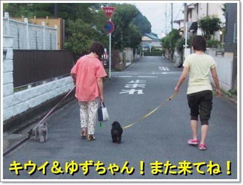 20140721_071.jpg