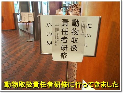 20140724_001.jpg