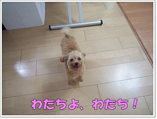 20140725_011.jpg