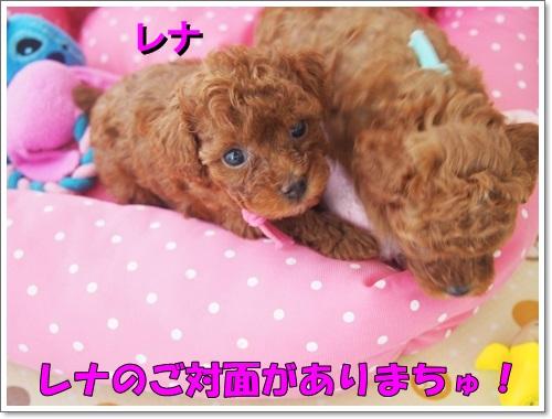 20140802_001.jpg