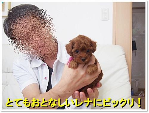 20140802_030.jpg