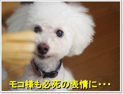 20140812_051.jpg