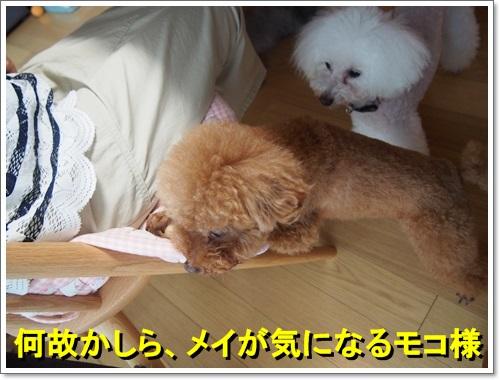 20140812_081.jpg