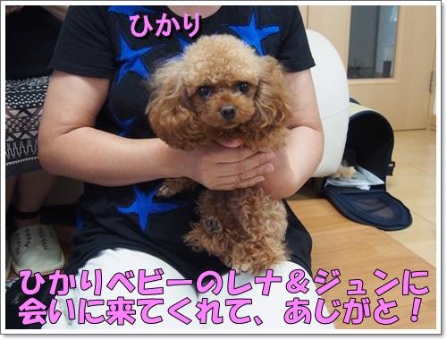 20140817_119.jpg