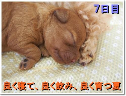 20140817_138.jpg