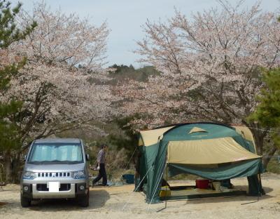 桜キャンプサイト