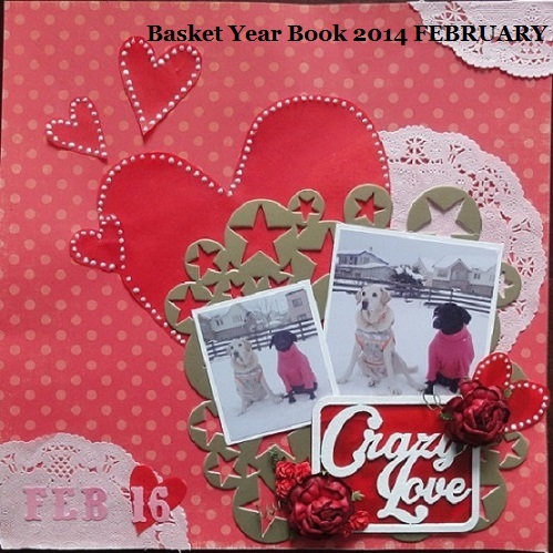 basketyb2014 feb