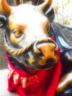 よだれかけが美しい。さすが京都の撫で牛。