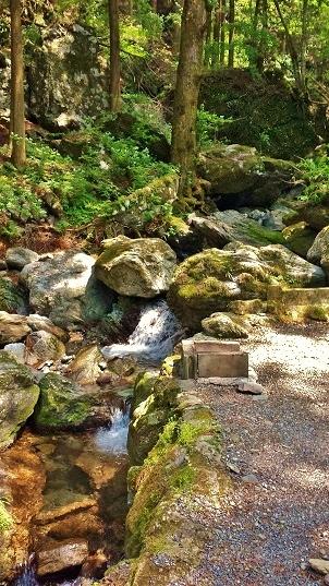 伊豆ヶ岳キャンプ23