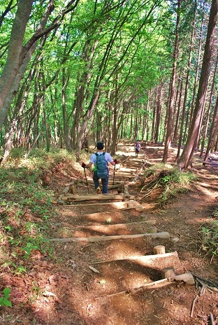 伊豆ヶ岳キャンプ12