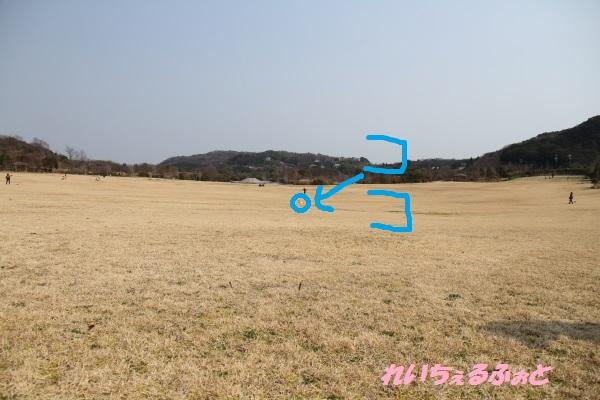 DPP_3445.jpg