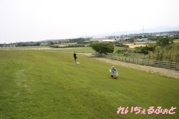 DPP_4057.jpg