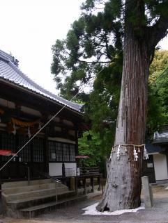 藤尾+052_convert_20140514172920