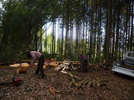 森のたね お寺の森づくり 材活用