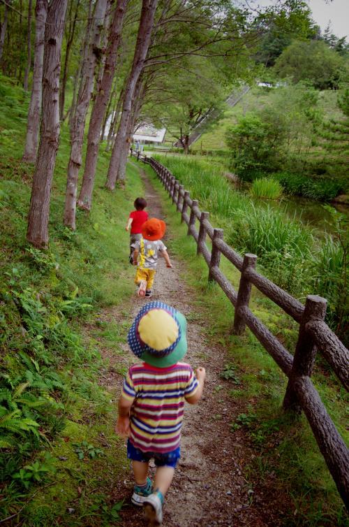 森をお散歩