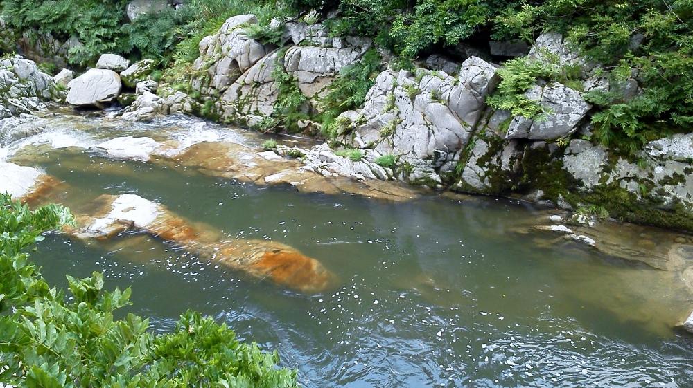 夏井渓谷2 (1000x561)