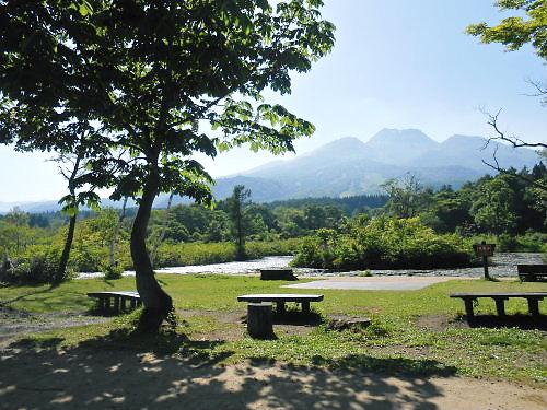 08 500 20140601 いもり池、栃の木、妙高山