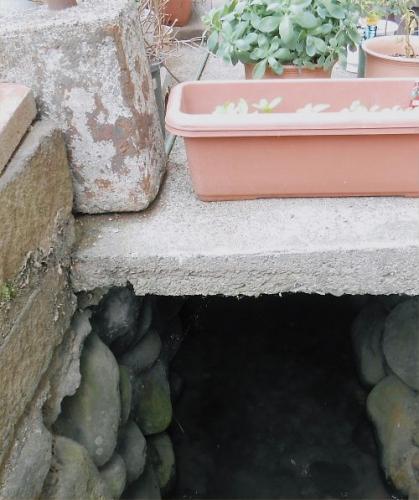 19 500 20140627 石積み用水between菜園 LL