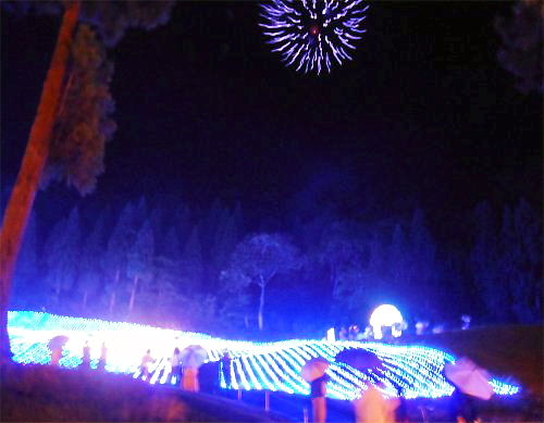 500 20140802 PineValleyillumination23花火