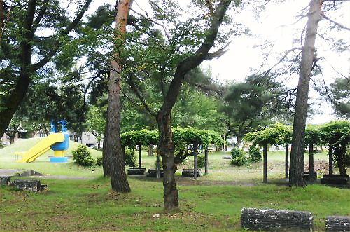 05 500 20140904 Robbot Park03 かつての水辺公園