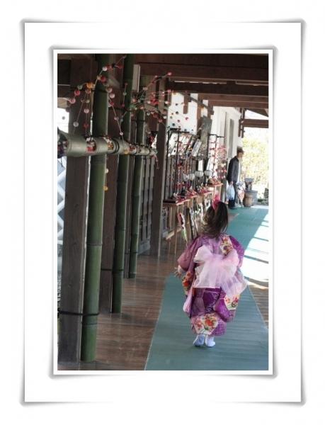 瀬戸屋敷と河津桜