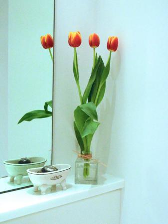 tulipho3