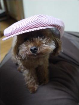 ハンチング帽4