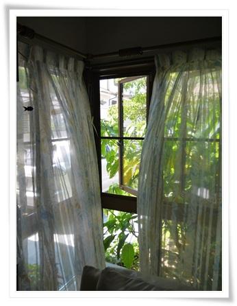 カーテン洗濯2
