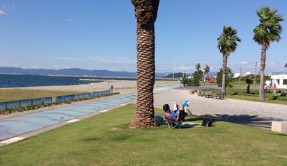 南国風の臨海公園