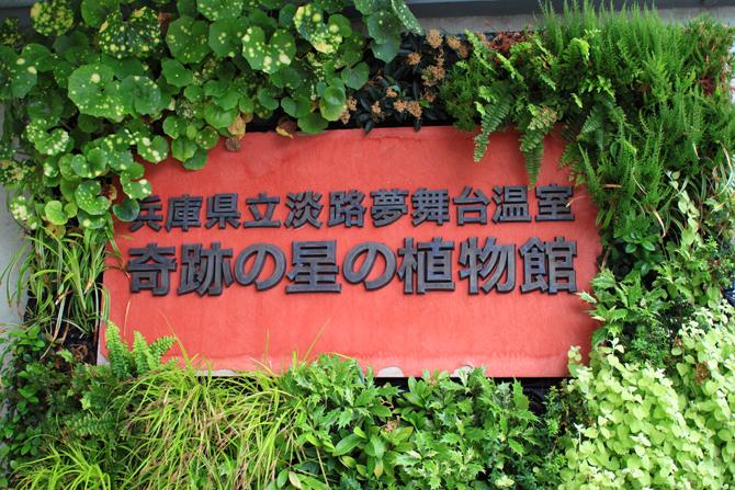 キセキの星の植物館
