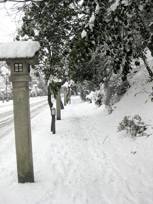 雪の伊勢09