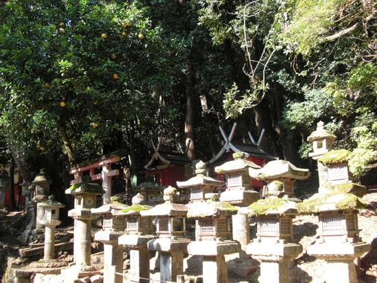 葛城神社(懸橋社)01