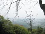 朝熊山③03