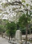 八大龍王社(龍池社)12