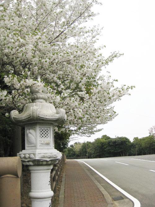 伊勢志摩スカイラインのレストハウス02