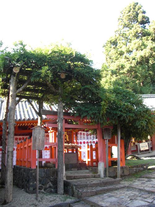 多賀神社(春日)01