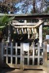 浅間神社(江古田)13