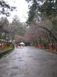 日吉・西本宮08