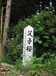 大和神社-祖霊社02