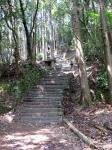 愛宕山登山01-15