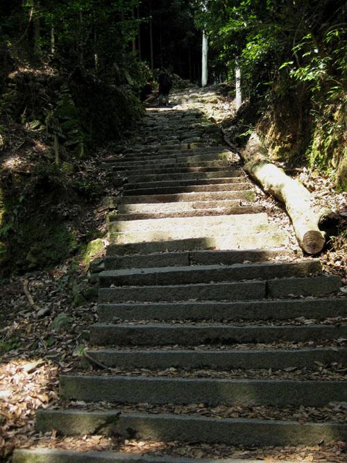 愛宕山登山01-23