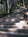 愛宕山登山01-21