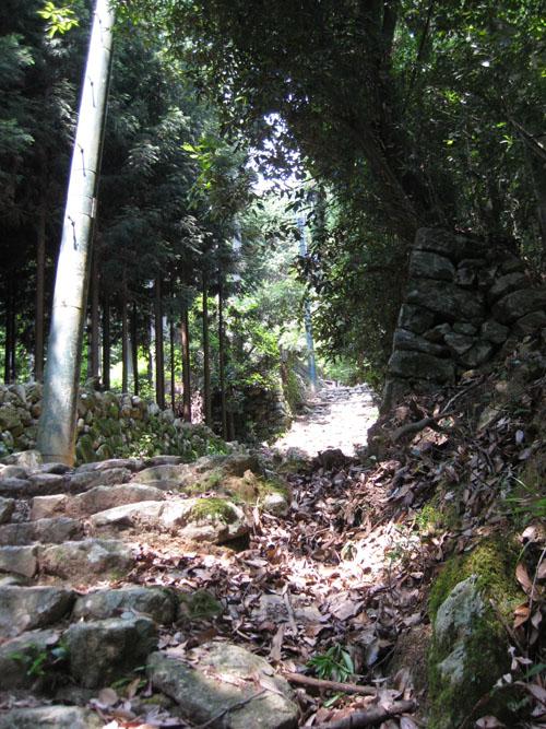 愛宕山登山2-01