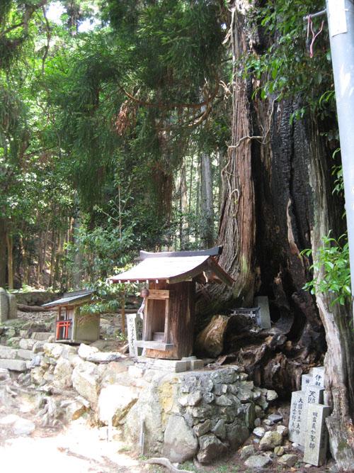 愛宕山登山2-03