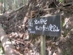 愛宕山登山2-16